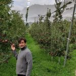 Singh Apple Orchards