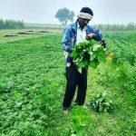 Eekam Farms