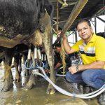 O'Leche Dairy Farms