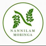 Nannilam Moringa
