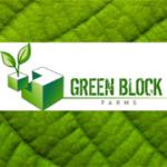 Green Block Farms