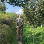 Shimla Organic Apple Orchar