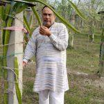 Dhingra Natural Fruit Farm