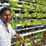 Infinity Hydroponic Green Farms(IHG farms pvt ltd)