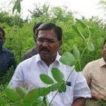 Raavi Organic Farms
