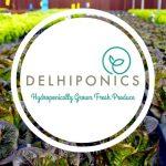Delhiponics